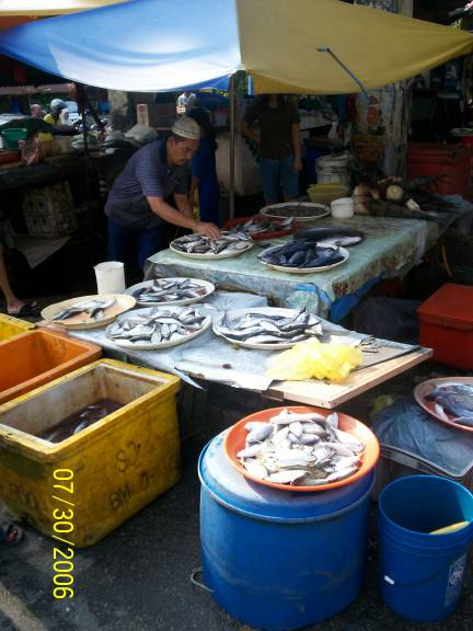 Photo album for Local fish market